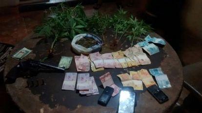 PM descobriu planta��o de maconha em Quirin�polis